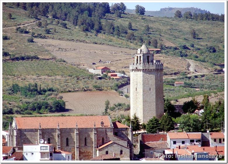 Freixo Espada Cinta - Torre do galo1 - foto canalblog
