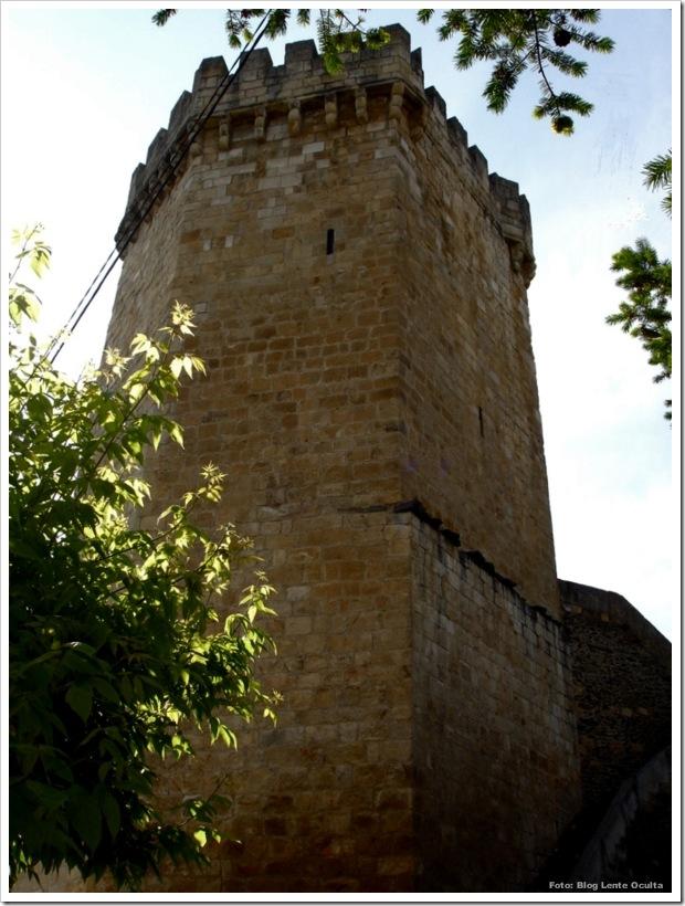 Castelo de Freixo de Espada à Cinta - Foto Lente Oculta