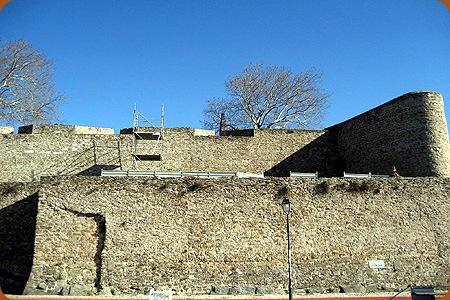 Castelo de Abrantes  - Rui Miguel Silva